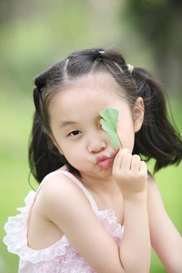 φύλλα παιδιών στοκ φωτογραφίες