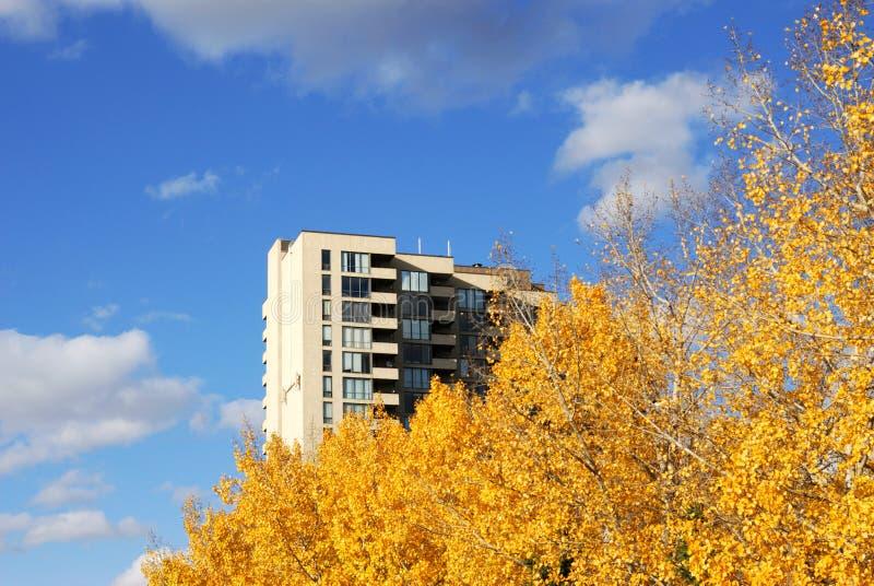 φύλλα πολυόροφων κτιρίων φθινοπώρου διαμερισμάτων στοκ εικόνα με δικαίωμα ελεύθερης χρήσης
