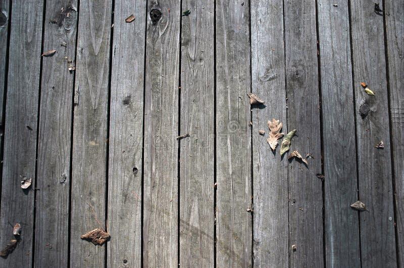 Φύλλα που διαδίδονται γύρω από ξύλινο στοκ εικόνα με δικαίωμα ελεύθερης χρήσης