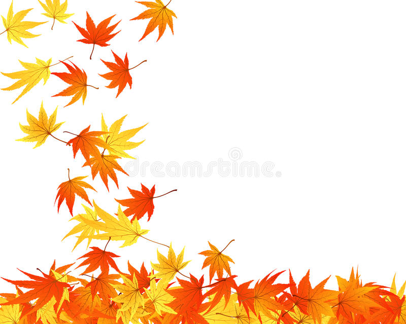 φύλλα που στρίβονται ελεύθερη απεικόνιση δικαιώματος