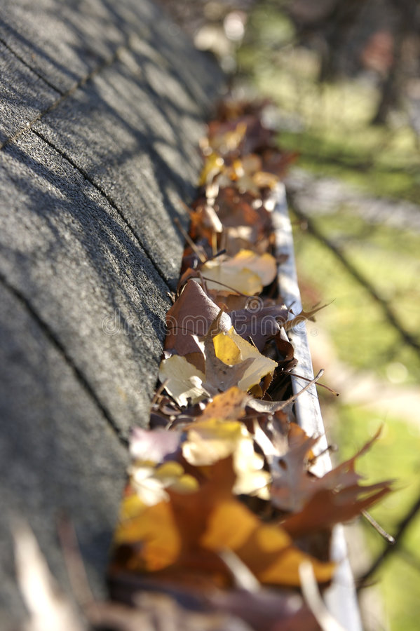 φύλλα υδρορροών πτώσης κα στοκ φωτογραφία με δικαίωμα ελεύθερης χρήσης