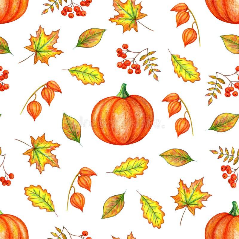 Φύλλα φθινοπώρου, κολοκύθα και μούρα σορβιών ελεύθερη απεικόνιση δικαιώματος