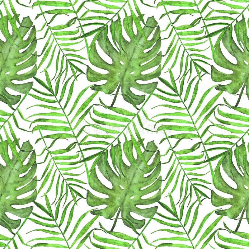Φύλλα φοινικών Watercolor και άνευ ραφής σχέδιο monstera Θερινό φωτεινό σχέδιο των τροπικών φύλλων απεικόνιση αποθεμάτων