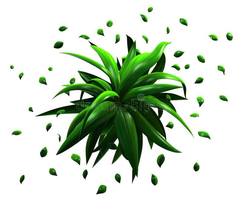 Φύλλα φυτού πράσινα, διασπορά απεικόνιση αποθεμάτων