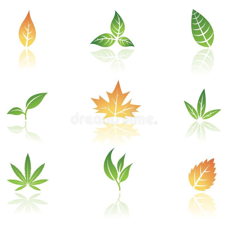 φύλλα διανυσματική απεικόνιση