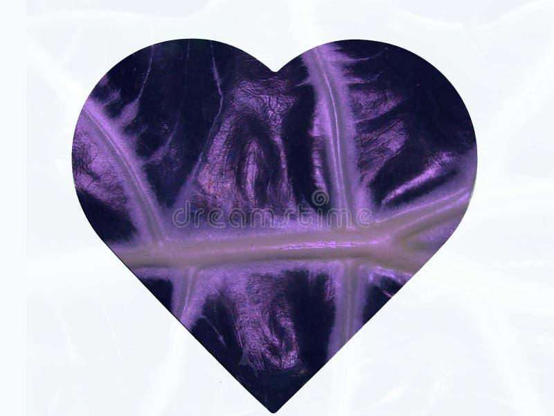 φύλλο καρδιών Στοκ Εικόνες