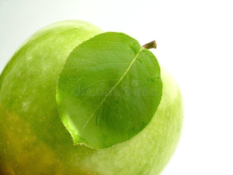 Download φύλλο μήλων στοκ εικόνες. εικόνα από πράσινος, θερμίδα - 120386