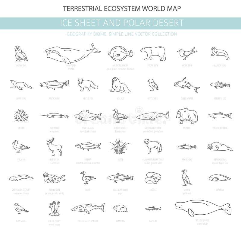 Φύλλο πάγου και πολικό biome ερήμων Απλό ύφος γραμμών Επίγειος παγκόσμιος χάρτης οικοσυστήματος Αρκτικά ζώα, πουλιά, ψάρια και φυ διανυσματική απεικόνιση
