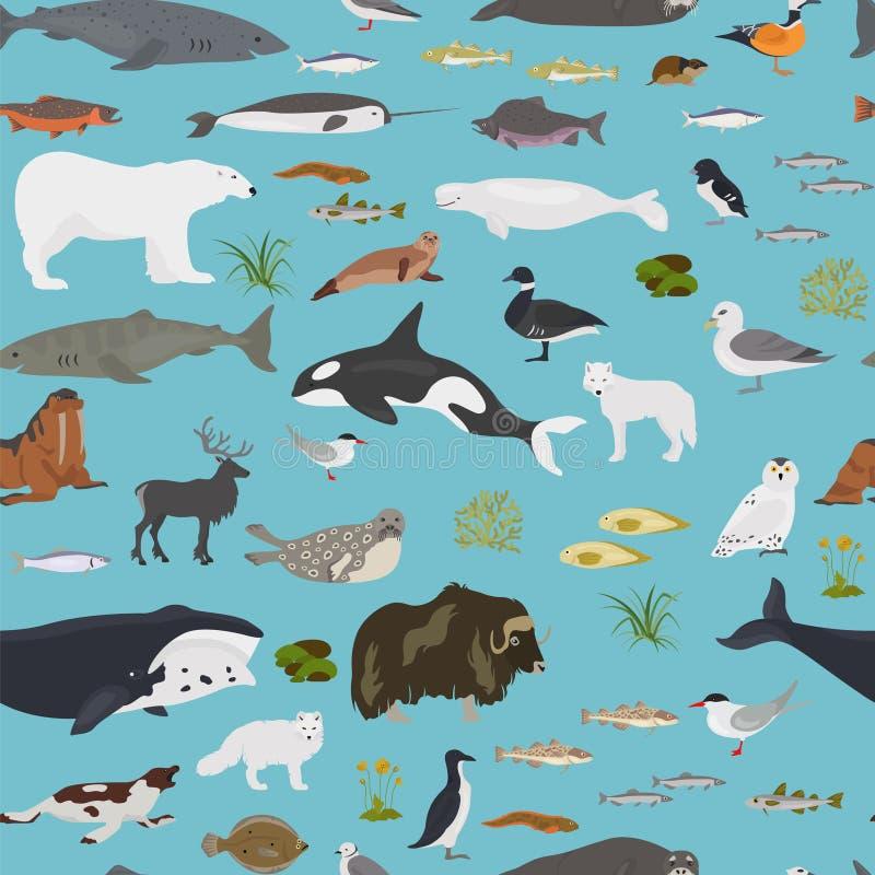 Φύλλο πάγου και πολικό biome ερήμων Επίγειος παγκόσμιος χάρτης οικοσυστήματος Αρκτικό σχέδιο σχεδίων ζώων, πουλιών, ψαριών και φυ ελεύθερη απεικόνιση δικαιώματος