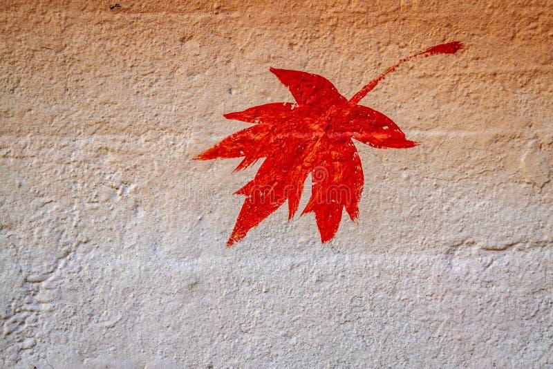 Φύλλο σφενδάμου που χρωματίζεται στο σκυρόδεμα στοκ φωτογραφία