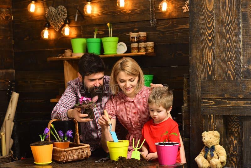 φύση αγάπης παιδιών γυναικών, ανδρών και μικρών παιδιών ευτυχείς κηπουροί με τα λουλούδια άνοιξη Πότισμα προσοχής λουλουδιών Εδαφ στοκ φωτογραφίες με δικαίωμα ελεύθερης χρήσης