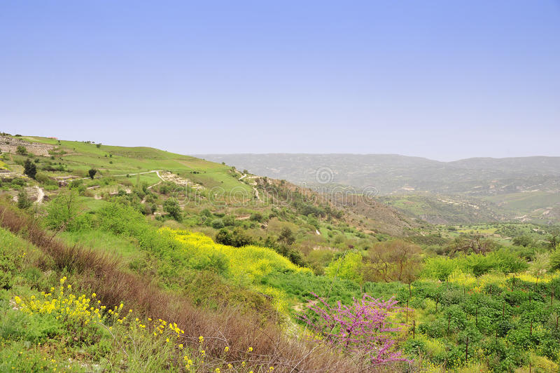 Φύση βουνών της Κύπρου στοκ εικόνες