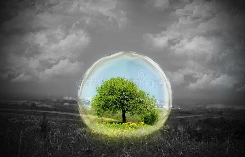 φύση γυαλιού κάτω στοκ εικόνα με δικαίωμα ελεύθερης χρήσης