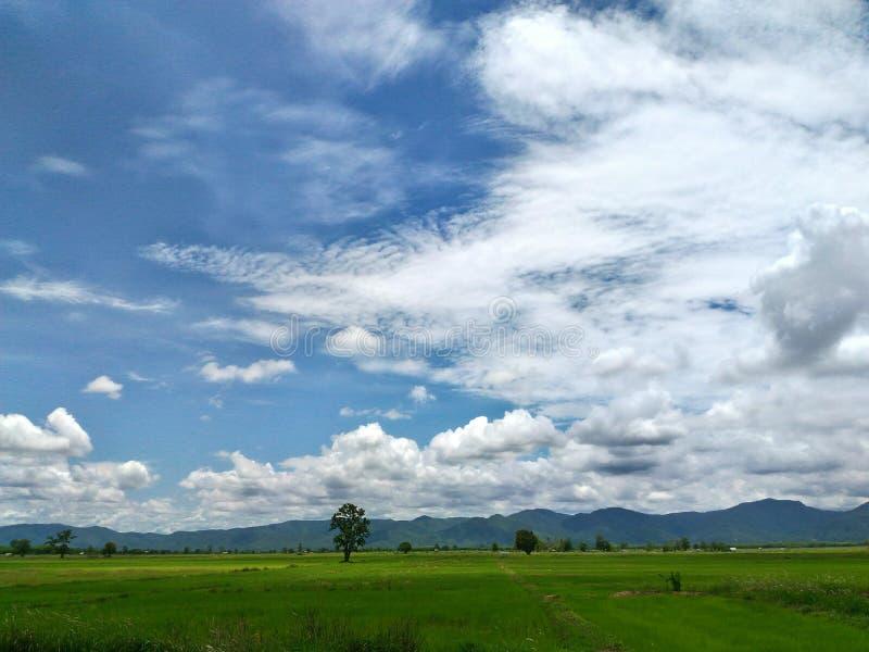 Φύση και σύννεφα στοκ εικόνες