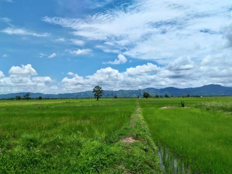 Φύση και σύννεφα στοκ εικόνα