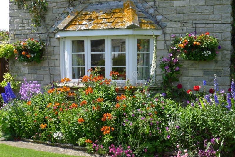 Φύση Κορνουάλλη, νότια Αγγλία στοκ φωτογραφία με δικαίωμα ελεύθερης χρήσης