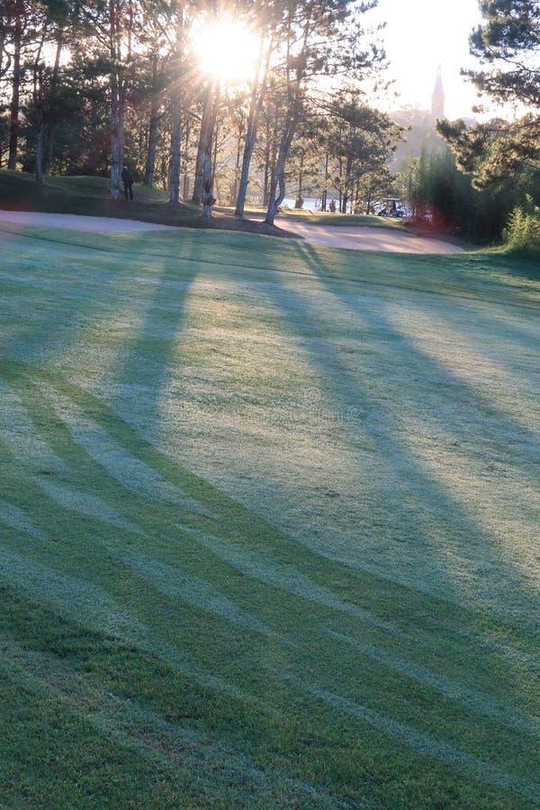 Φύση με τα μαγικά sunrays, την ηλιοφάνεια, την ελαφριά και πράσινη χλόη, λιβάδι Χρήση φωτογραφιών στο σχέδιο ιδέας για το γκολφ,  στοκ εικόνα με δικαίωμα ελεύθερης χρήσης