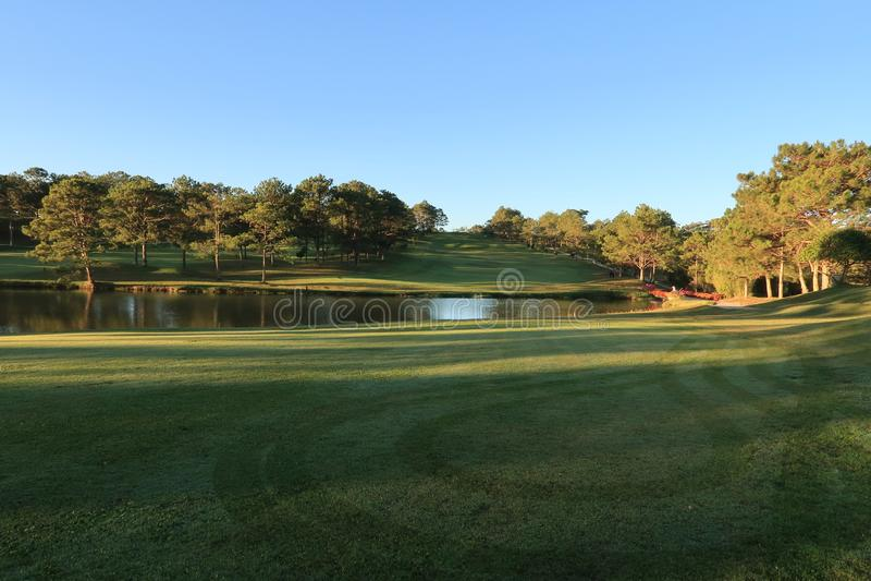 Φύση με τα μαγικά sunrays, την ηλιοφάνεια, την ελαφριά και πράσινη χλόη, λιβάδι Χρήση φωτογραφιών στο σχέδιο ιδέας για το γκολφ,  στοκ φωτογραφίες