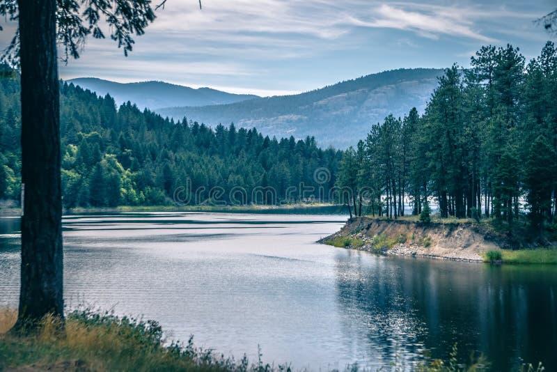 Φύση πολιτεία της Washington ποταμών της Κολούμπια στοκ εικόνες με δικαίωμα ελεύθερης χρήσης