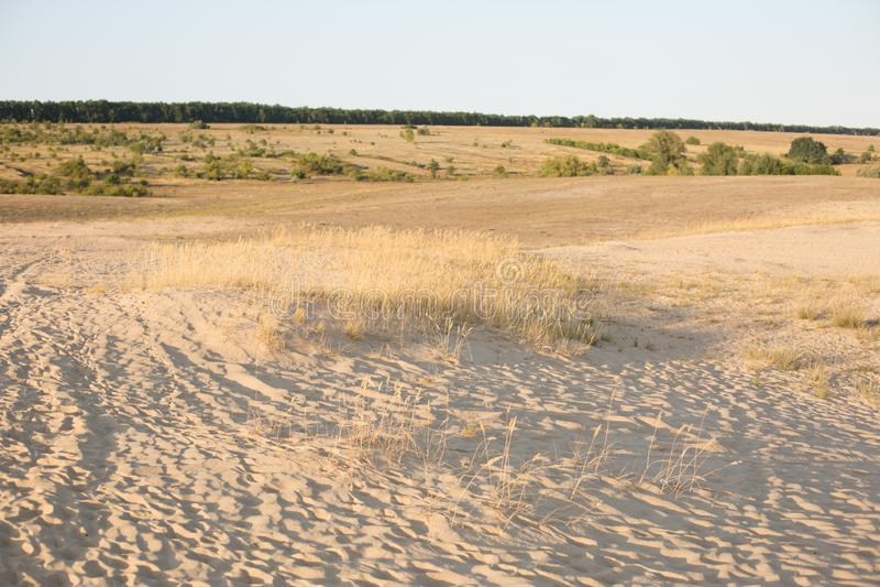 Φύση στέπα Άμμος τοπίο περιοχής συντήρησης στοκ εικόνες με δικαίωμα ελεύθερης χρήσης