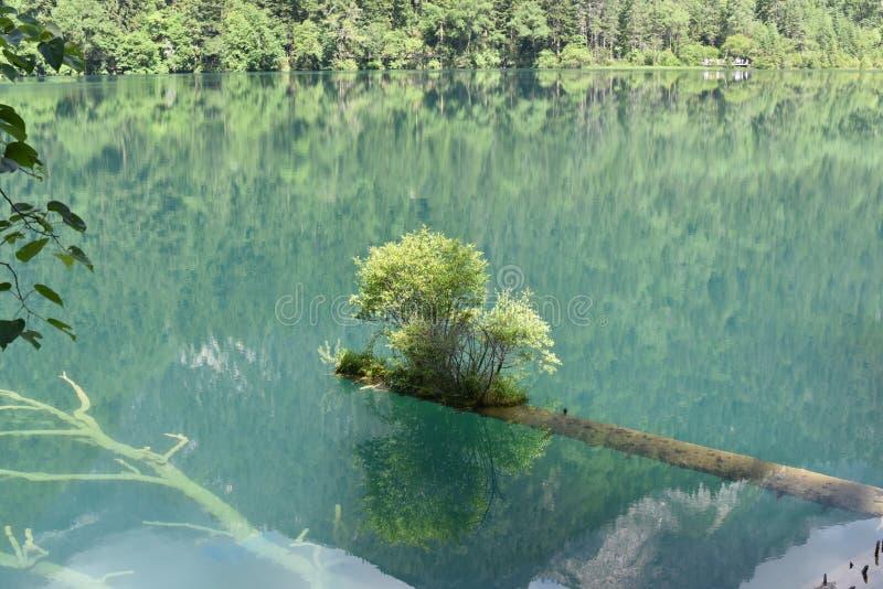 Φύση στην Κίνα στοκ εικόνες