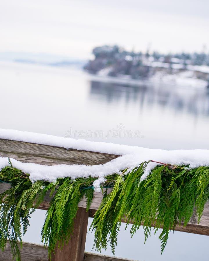 Φύση στο Pacific Northwest στοκ εικόνες