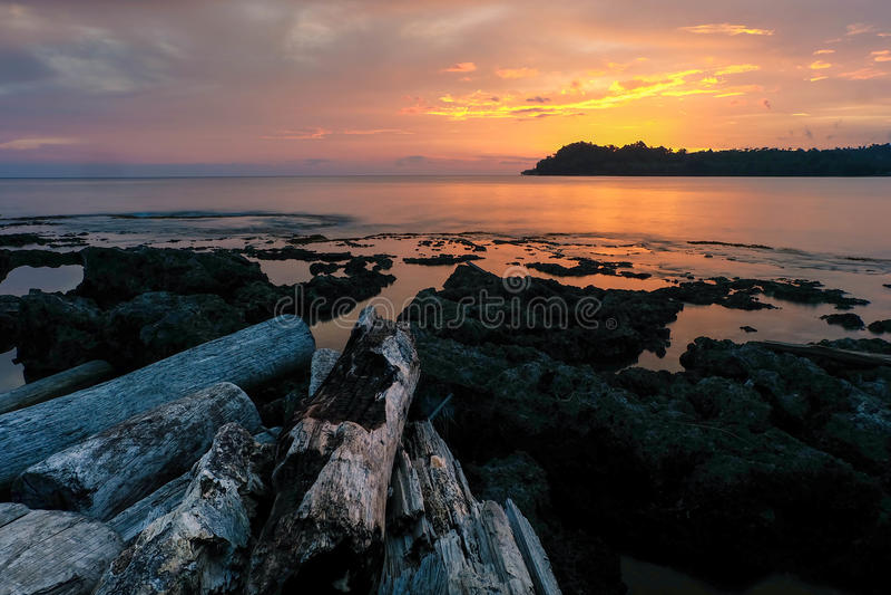 Φύση της Παπούα Νέα Γουϊνέα στοκ φωτογραφίες με δικαίωμα ελεύθερης χρήσης
