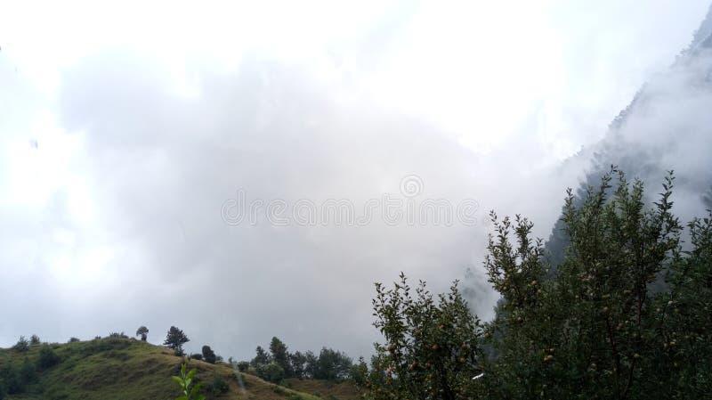 Φύση των λόφων γήινου Shimla στοκ φωτογραφία με δικαίωμα ελεύθερης χρήσης
