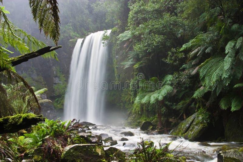 Φύση 1 στοκ φωτογραφίες