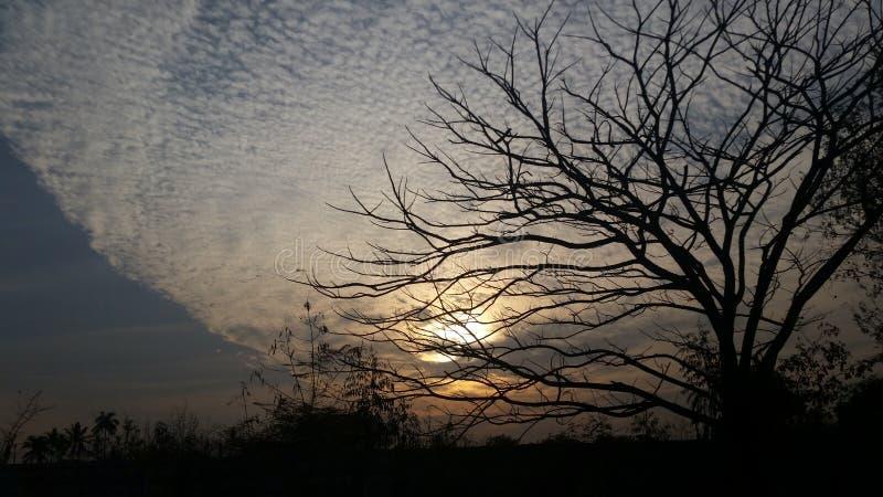 Φύση! στοκ φωτογραφία