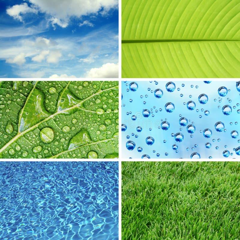 φύση eco ανασκοπήσεων στοκ φωτογραφία με δικαίωμα ελεύθερης χρήσης