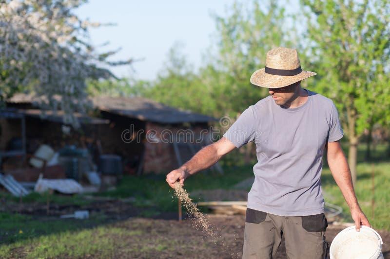 Φύτευση ενός νέου χορτοτάπητα στοκ φωτογραφία με δικαίωμα ελεύθερης χρήσης