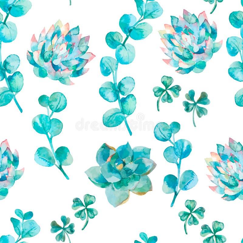 Φύλλα ευκαλύπτων Watercolor και succulent Χρωματισμένος χέρι κλάδος ευκαλύπτων σχεδίων watercolor απεικόνιση αποθεμάτων