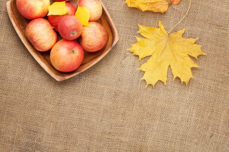 Φύλλα και μήλα φθινοπώρου πέρα από burlap στοκ εικόνα