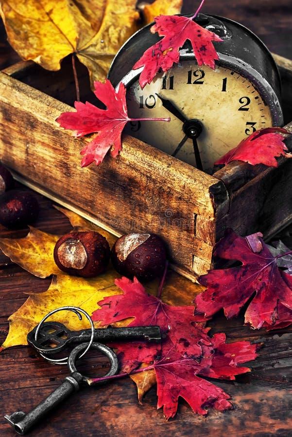 Φύλλα Οκτωβρίου στοκ εικόνες
