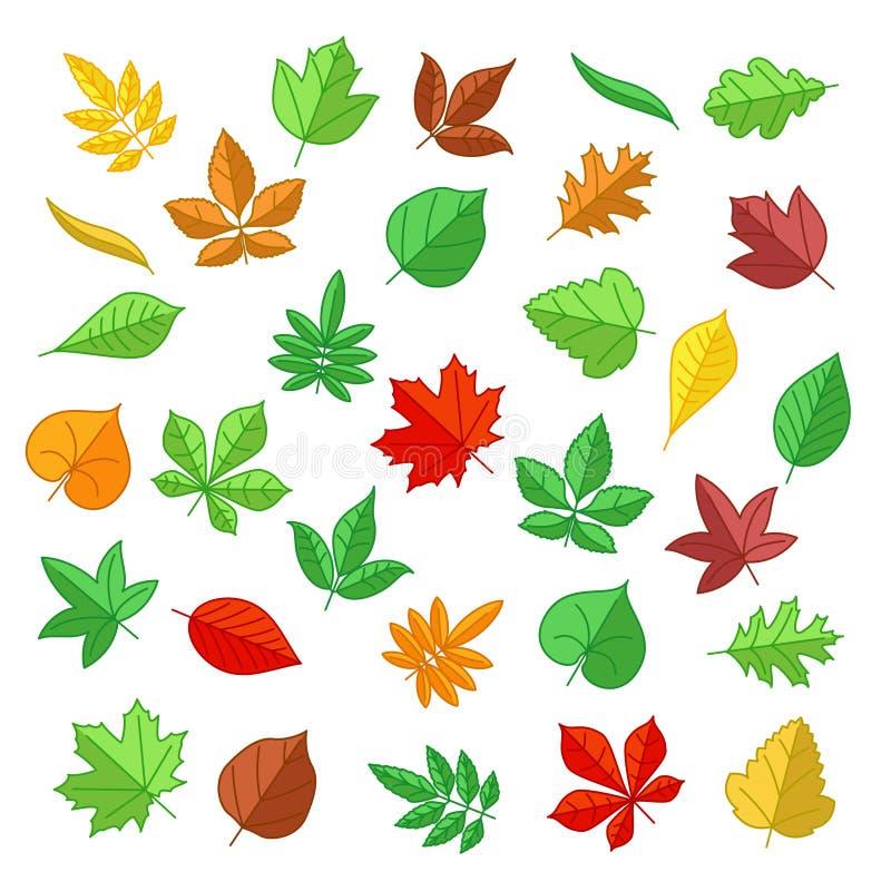Φύλλα φθινοπώρου και καλοκαιριού στο επίπεδο ύφος τα εικονογράμματα Διαδικτύου εικονιδίων που τίθενται το διανυσματικό ιστοχώρο Ι διανυσματική απεικόνιση