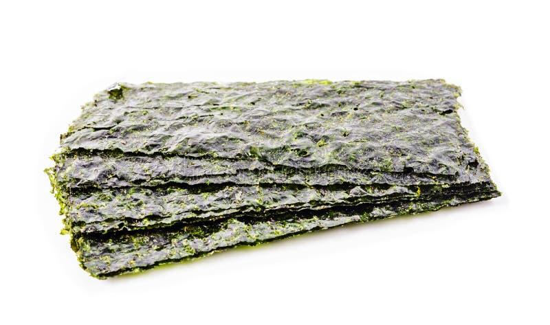 Φύλλο του ξηρού φυκιού, τριζάτα φύκια στοκ εικόνα
