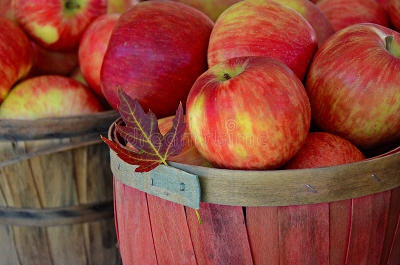 φύλλο φθινοπώρου με τα μήλα στα καλάθια στοκ φωτογραφίες