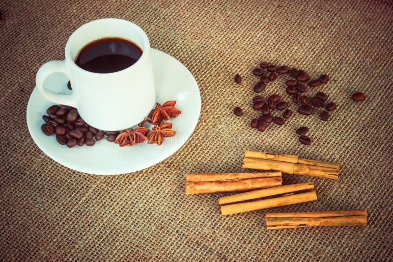 Φλυτζάνι καφέ με την κανέλα, το γλυκάνισο και τα φασόλια στοκ εικόνες