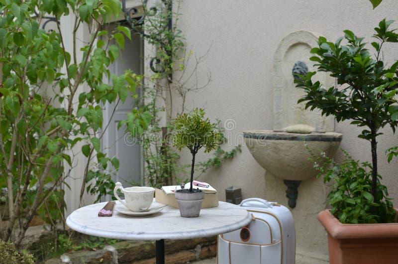Φλυτζάνι στον κήπο στοκ φωτογραφία με δικαίωμα ελεύθερης χρήσης