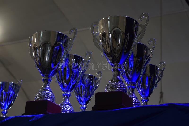 φλυτζάνι του νικητή απονεμημένη βραβείο στοκ φωτογραφίες