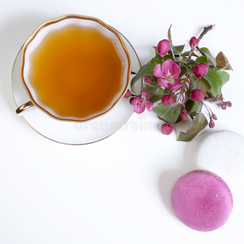 Φλυτζάνι του τσαγιού με τα ρόδινα άνθη μήλων και τα μπισκότα μακαρονιών στοκ φωτογραφίες