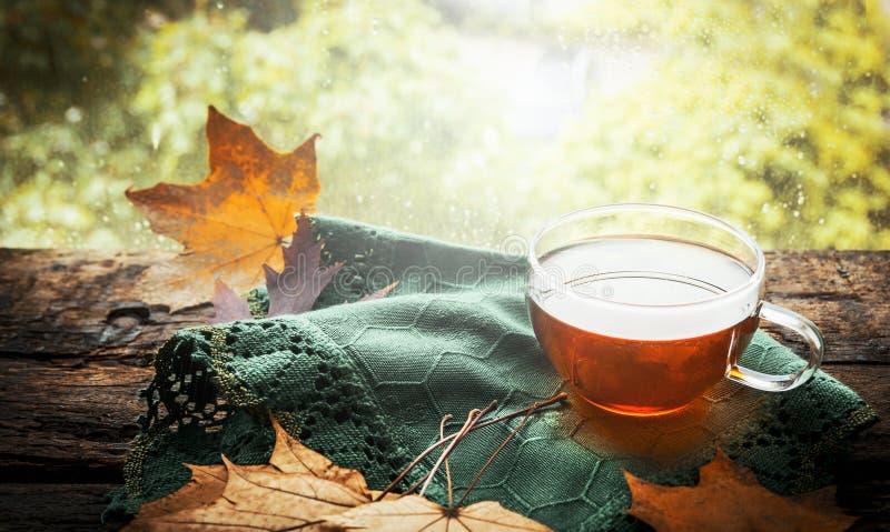 Φλυτζάνι του τσαγιού με τα φύλλα φθινοπώρου και της πράσινης πετσέτας στην ξύλινη στρωματοειδή φλέβα παραθύρων στο υπόβαθρο φύσης στοκ εικόνα με δικαίωμα ελεύθερης χρήσης