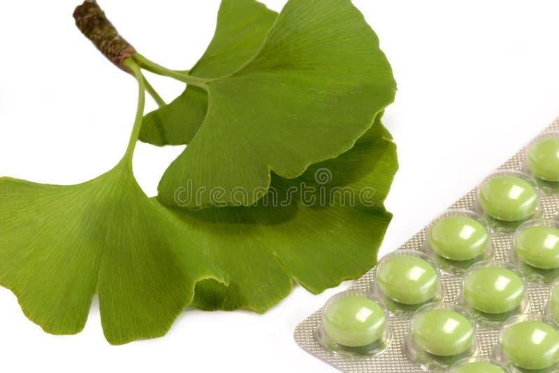 χάπια gingko στοκ φωτογραφία με δικαίωμα ελεύθερης χρήσης