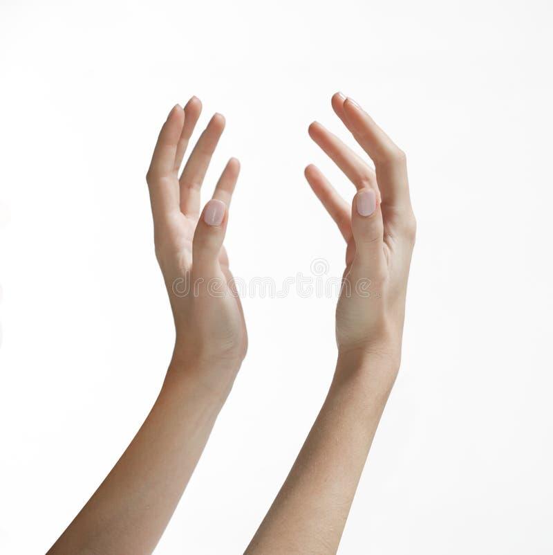 Χέρια γυναίκας που φθάνουν επάνω στοκ εικόνες