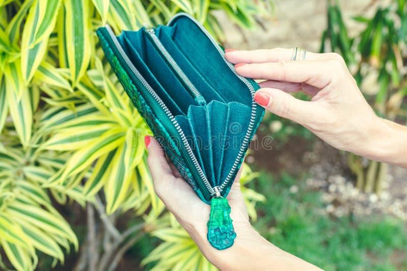 Χέρια γυναικών κινηματογραφήσεων σε πρώτο πλάνο με το πορτοφόλι πολυτέλειας μόδας snakeskin python Υπαίθρια, νησί του Μπαλί στοκ εικόνες