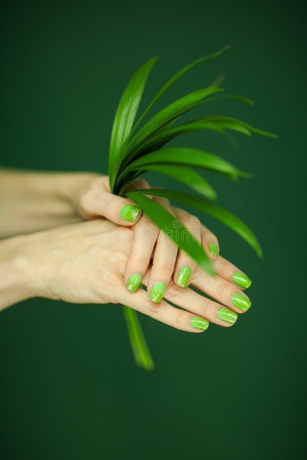 Χέρια γυναικών με την πράσινη στιλβωτική ουσία καρφιών που κρατά μερικά τροπικά φύλλα στοκ εικόνες