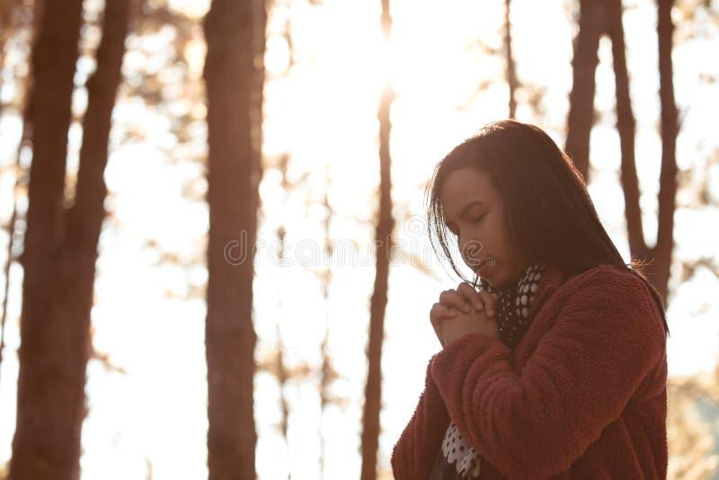 Χέρια γυναικών που διπλώνονται στην προσευχή στο όμορφο πάρκο δέντρων πεύκων φύσης στοκ φωτογραφίες με δικαίωμα ελεύθερης χρήσης