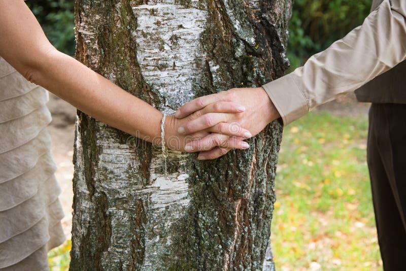 Χέρια εκμετάλλευσης: ζεύγος ερωτευμένο αγκαλιάζοντας ένα δέντρο στοκ φωτογραφία
