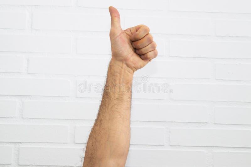 χέρια λευκά στοκ εικόνα